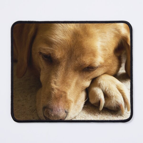 Willow the Wanderer sleeping Mouse Pad