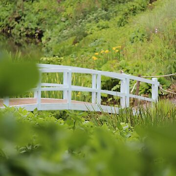Trebah Gardens, Cornwall by BubblessandMia