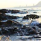seashore by dedakota