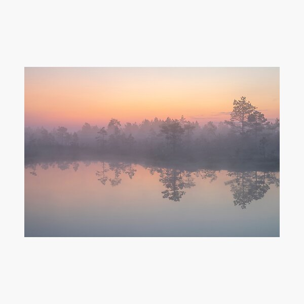 Colourful night in a bog Photographic Print