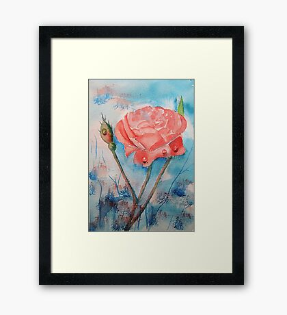 Raindrops on Roses Framed Print