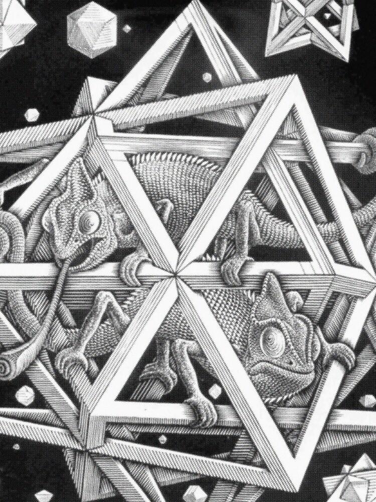 MC Escher Halbton von UnitShifter