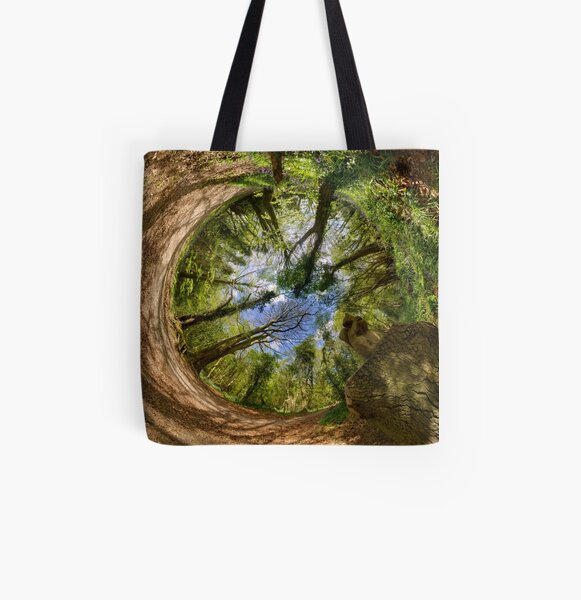 Squirrel Sculpture in Prehen Woods, Derry - Sky In All Over Print Tote Bag