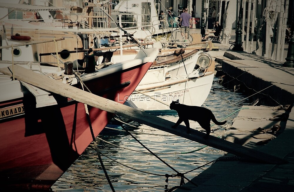 Sailing Cat Greece by Louise Fahy