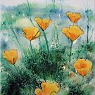 California Poppies by FrancesArt