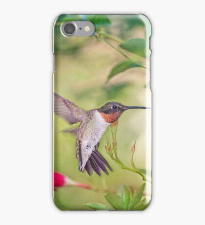 Hummingbird in Late Summer iPhone Case/Skin