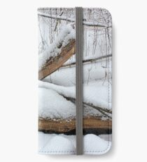 Breaching in a Snow Storm iPhone Wallet/Case/Skin