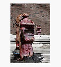Robots Photographic Print