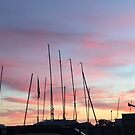 Boat Masts  by Christine  Wilson