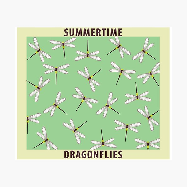 Summertime dragonflies pattern poster with colors Photographic Print