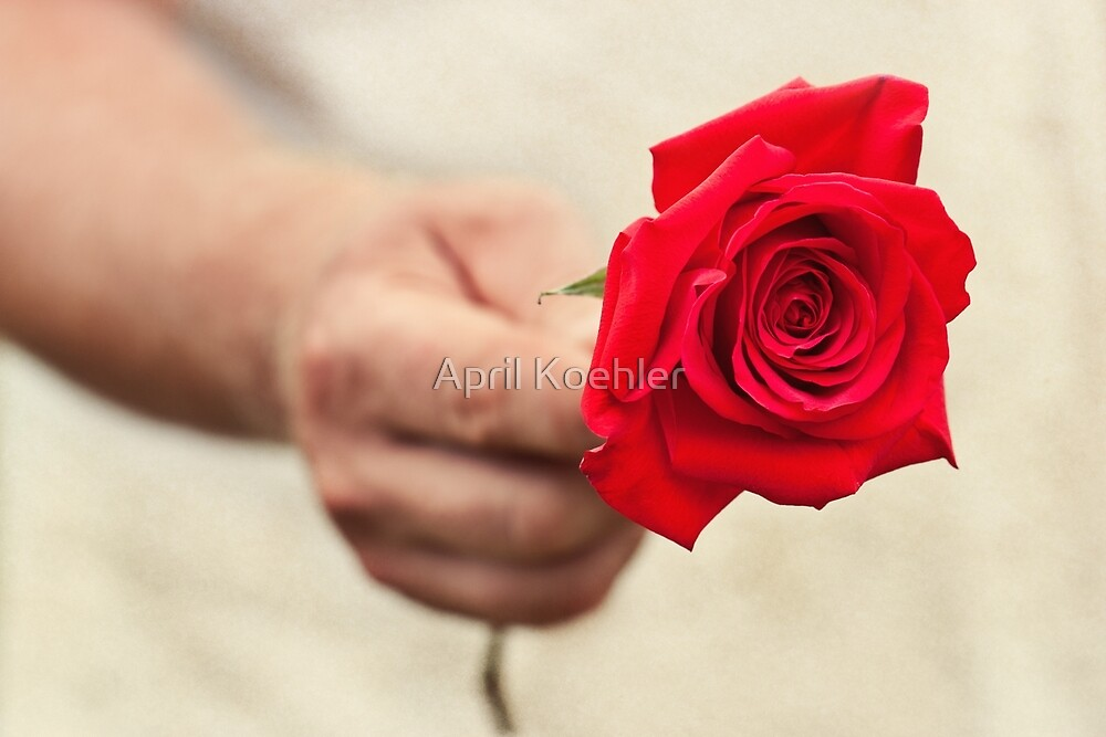 To My Love by April Koehler