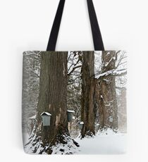 Maple Sugaring Time Tote Bag