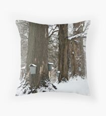 Maple Sugaring Time Throw Pillow