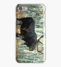 Huge Moose  iPhone Case/Skin