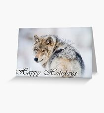 Timber Wolf Holiday Card - 19 Greeting Card