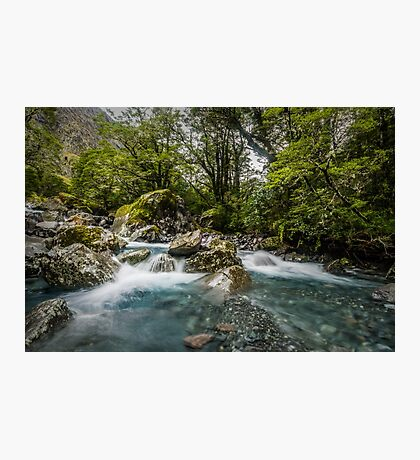 Headwaters of the Hollyford Photographic Print