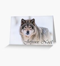 Timber Wolf Christmas Card - French - 21 Greeting Card