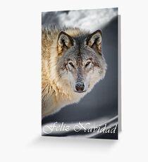 Timber Wolf Christmas Card - Spanish - 22 Greeting Card