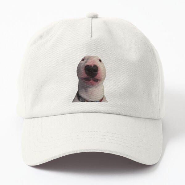 @PupperNelson: Photo Meme Face Dad Hat