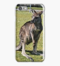 Wild Kangaroo 1 iPhone Case/Skin