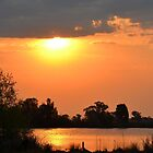 Wetland Sunset by EvelynMC