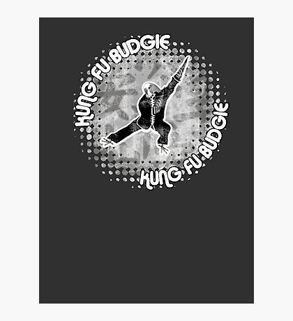 Budgie Style Kung Fu Photographic Print