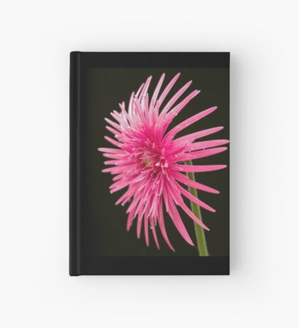 Life of  a Beauty Hardcover Journal