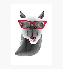 Hipster Llama Design Photographic Print
