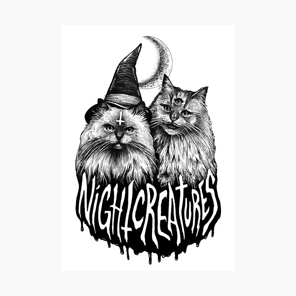 NIGHT CREATURES Photographic Print