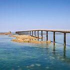Roscoff jetty by 29Breizh33