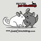 """Just Chinchilling!"" Friendly Chinchillas by FreakShop404"