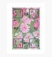 Life / Death / Extortion 悪意 Photographic Print