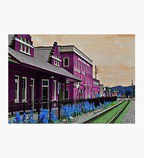 Walking through my technicolor daydream Photographic Print