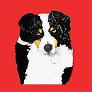 Black Tri Australian Shepherd Portrait by Barbara Applegate