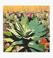 Agave in Stitches Photographic Print