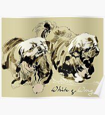 White & Wong Poster