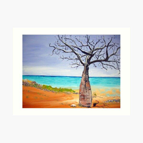 Broome Boab tree Art Print