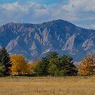 Boulder Colorado Autumn Flatiron Afternoon by Bo Insogna
