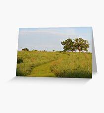 Trail Through Prairie Grasses Greeting Card