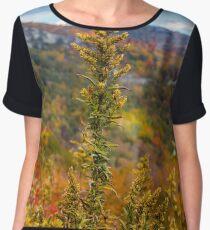 Blue Ridge Parkway Nature Women's Chiffon Top