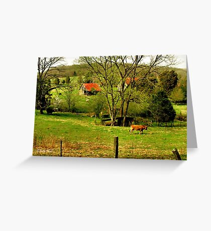 """""""Slow, but Sure""""... prints and products Greeting Card"""