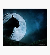 Hunter of the Night Photographic Print