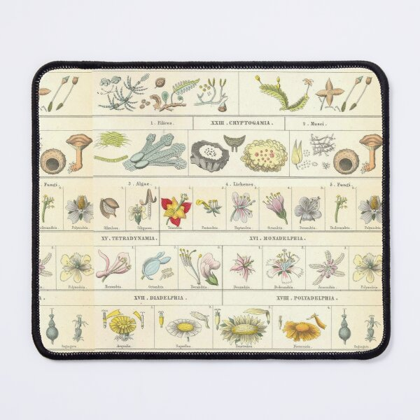 Botanical Chart by Bromme Mouse Pad