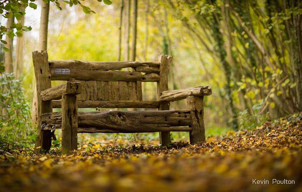 Bench by Kevin  Poulton