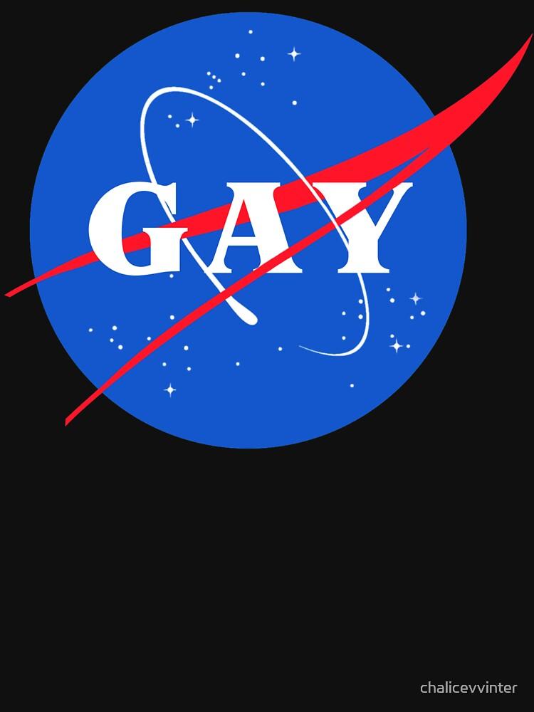 Nasa-Gay-Pride-Logo von chalicevvinter