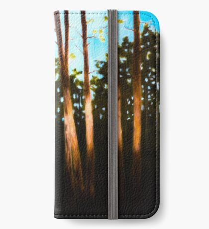 Breckenridge: A Swath of Light iPhone Wallet