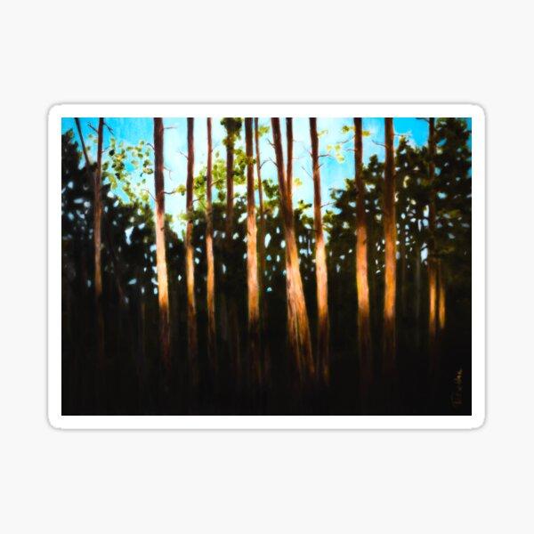 Breckenridge: A Swath of Light Sticker