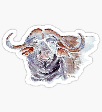 African buffalo or Cape buffalo (Syncerus caffer) Sticker