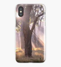 Light Streaming through trees iPhone Case/Skin