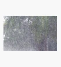 Wet Tropics Downpour Photographic Print